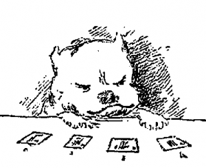 Image of a bulldog playing cards from H K F Eden's book The Bulldogs Fortune
